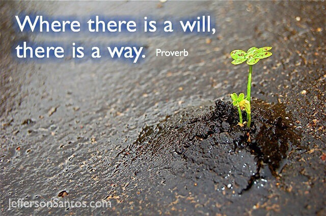 there is a will there is a way essay